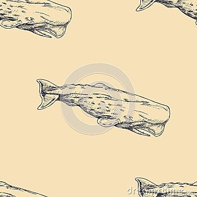 Vector seamless pattern. Hand drawn sperm whale. Vintage background. Sealife Cartoon Illustration