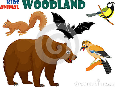 Vector set of cute woodland kids animals Vector Illustration