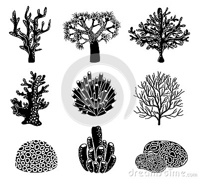 Free Vector Set Of Black Coral Silhouettes Royalty Free Stock Images - 56718539