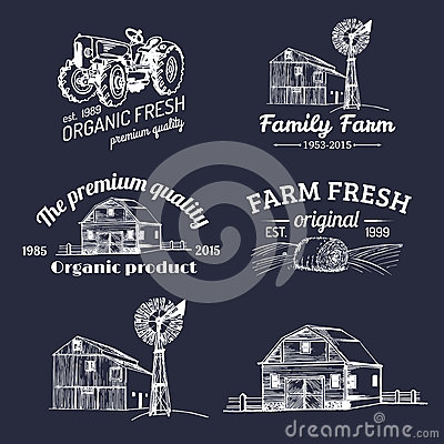 Free Vector Set Of Farm Fresh Logotypes. Bio Products Badges Collection. Vintage Hand Sketched Agricultural Equipment Icons. Royalty Free Stock Photography - 88853207