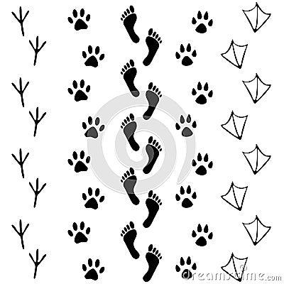 Free Vector Set Of Human And Animal, Bird Footprints Icon. Collection Of Bare Human Foots, Cat, Dog, Bird, Chicken, Hem, Crow, Duck Foo Stock Image - 66083221