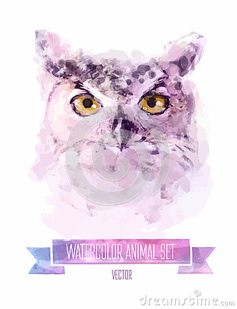 Free Vector Set Of Watercolor Illustrations. Cute Owl Royalty Free Stock Photography - 51968207