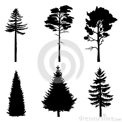 Vector Set of Pine Trees Black Silhouettes Vector Illustration