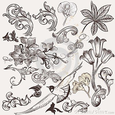 Vector set of vintage swirls and hand drawn elements