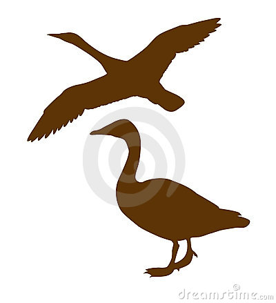Vector silhouette goose
