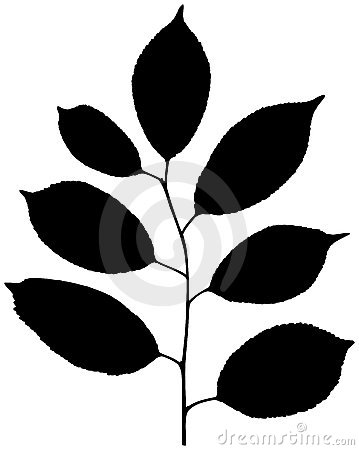 Vector silhouette of plant