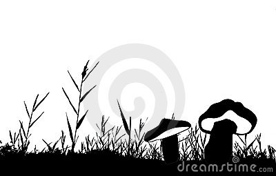 Vector silhouette of the reed