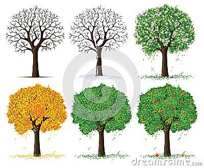 Vector silhouette season trees
