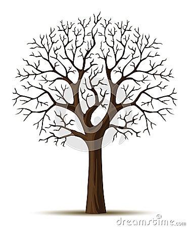 Vector silhouette tree crone