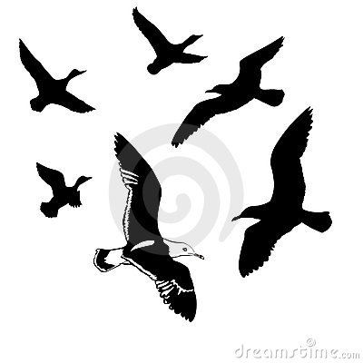 Free Vector Silhouettes Flying Birds Royalty Free Stock Photography - 8385417