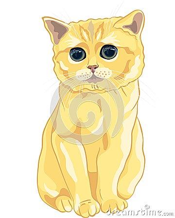 vector Sketch cute lilac British  kitten sitting