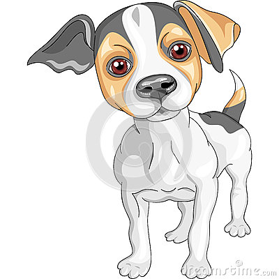 Vector Sketch Dog Jack Russell Terrier Breed Stock Photography - Image: 25098002