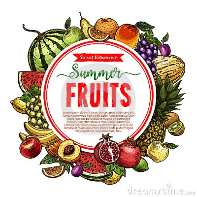 Free Vector Sketch Fruit Store Poster Of Farm Fruits Royalty Free Stock Photos - 112458458