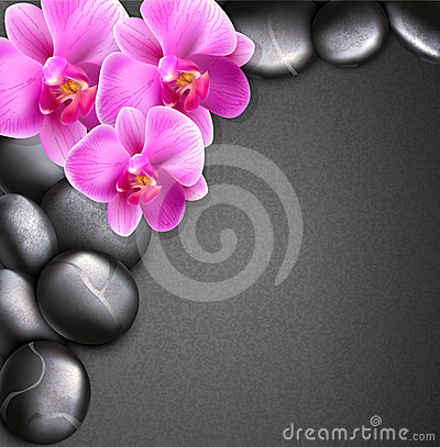 Vector spa background with stones and orchids
