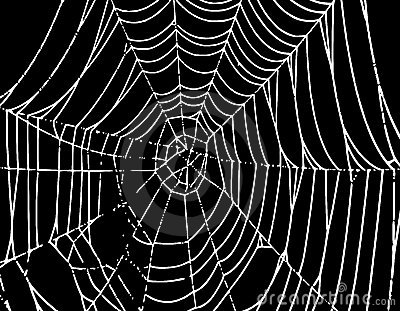 Vector Spider Web Background T