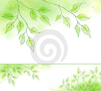 Free Vector Spring Banner With Green Foliage Royalty Free Stock Images - 12682309