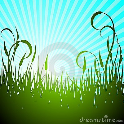 Vector spring illustration with green flower