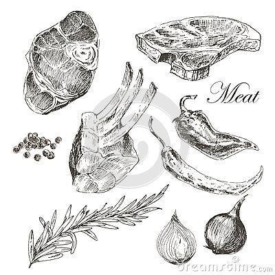 Free Vector Steak Meat Hand Drawing With Pepper And Royalty Free Stock Images - 63470859