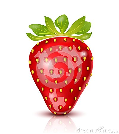 Vector Strawberry
