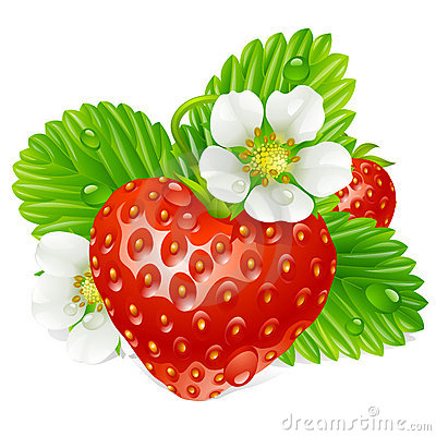 Vector Strawberry in the shape of heart