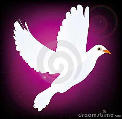 Vector symbol of peace pigeon