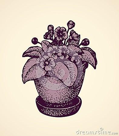 witte achtergrond tekening bloemen - photo #15