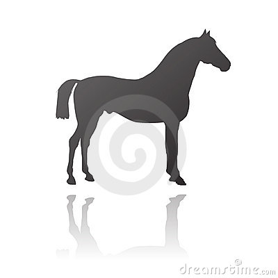 Vector thoroughbred horse