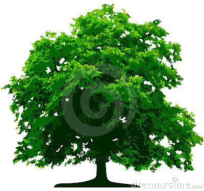 Free Vector Tree Royalty Free Stock Photography - 5748777