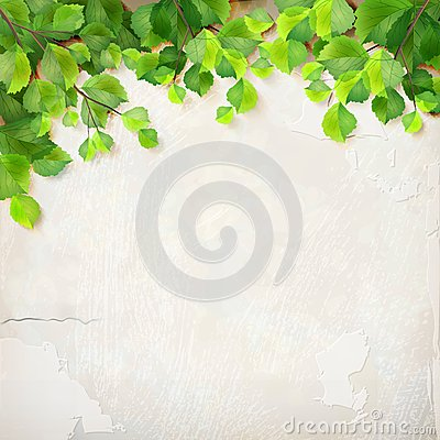 Vector tree branch leaves plaster wall background Vector Illustration