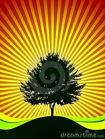Vector Tree On Shine Background Royalty Free Stock Images - Image: 4342039