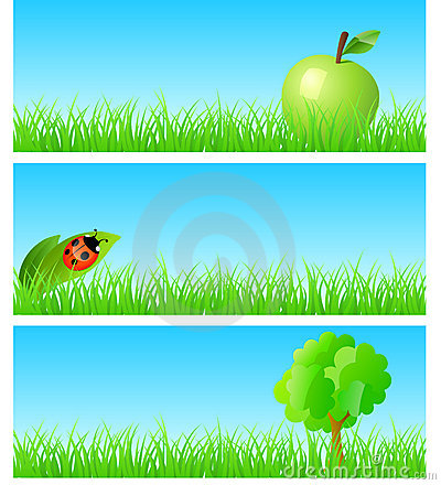 Vector triptych of objects on detailed grass