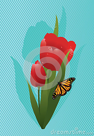 vector tulips and a butterfly