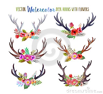 Free Vector Watercolor Deer Horns Stock Photo - 54950690