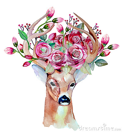 Free Vector Watercolor Hand Drawn Floral Set With Deer Stock Photo - 56982970