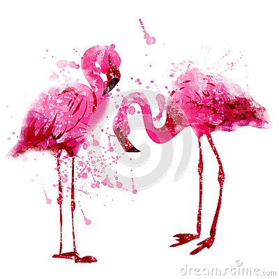 Free Vector Watercolor Pink Flamingo Couple In Splashes Royalty Free Stock Photo - 57481895