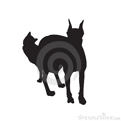 Vectored cat and dog together