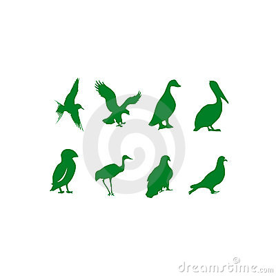Vectorial collection of birds