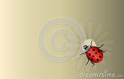 Vectorlieveheersbeestje en madeliefjeachtergrond
