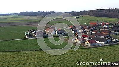 Vee en melkveehouderijen in een klein dorp in Europa, Levanjci, provincie van Destrnik in Slovenië stock footage