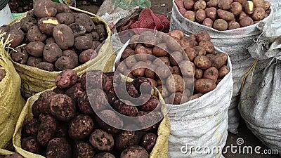 Veel aardappels in zakken bij de markt stock videobeelden