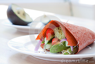 Vegan Raw Food Wrap