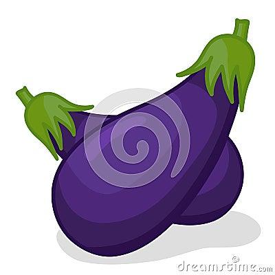 Vegetable eggplant