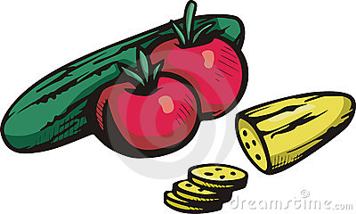 Vegetable illustration series