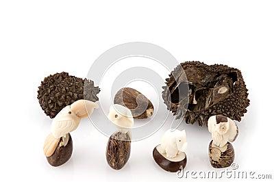 Vegetable Ivory