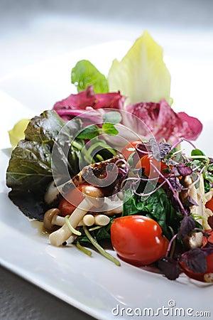 Free Vegetable Salad Royalty Free Stock Photos - 21951858