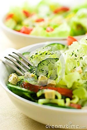 Free Vegetable Salads Stock Image - 10858231