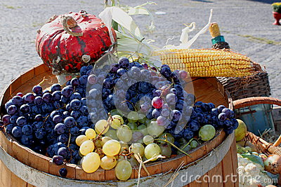 Bunches of grapes and vegetables