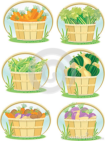 Vegetables in bushel baskets