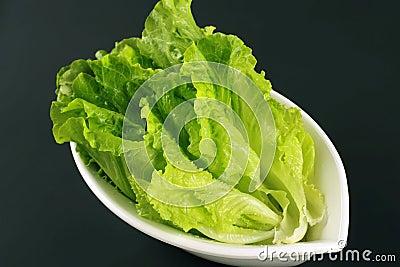 Vegetables,Romaine Lettuce