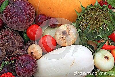 Vegetables on rural market